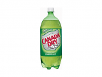 Canada Dry 2 Ltr