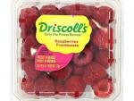 Driscolls Raspberries 6Oz